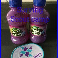 Surviving Scout camp