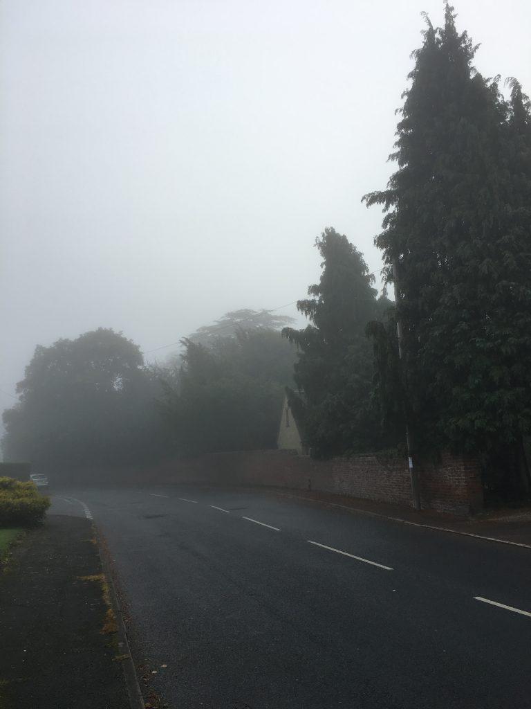 mist, fog, autumn, weather, 365