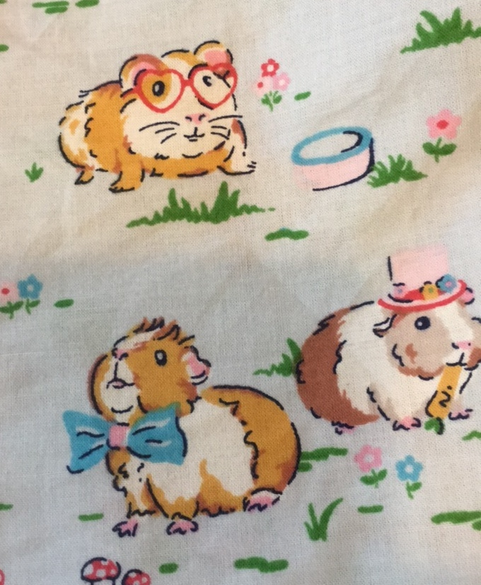 Guinea pigs, Cath Kidston, Birthday, 365