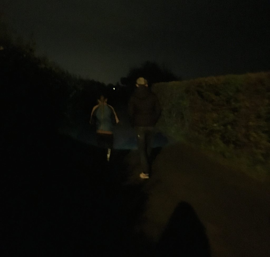 Walk, Family, Darkness, 365