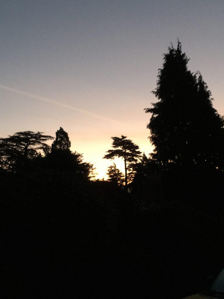 Sunrise, 365