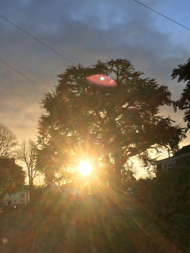 Sunlight, Sunrise, 365
