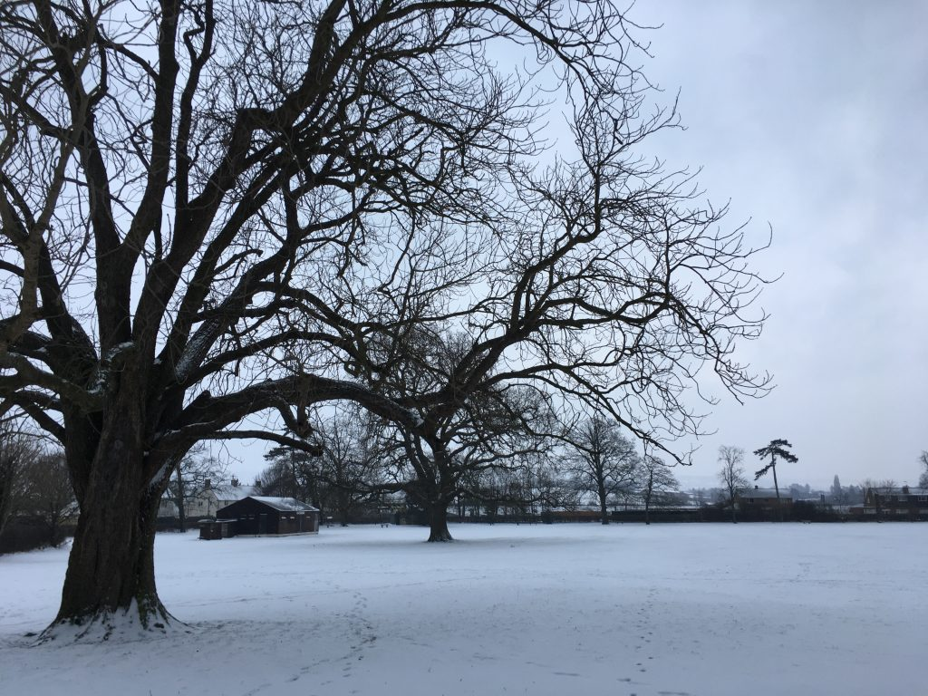 Snow, Beast from the East, Winter, Silent Sunday, My Sunday Photo