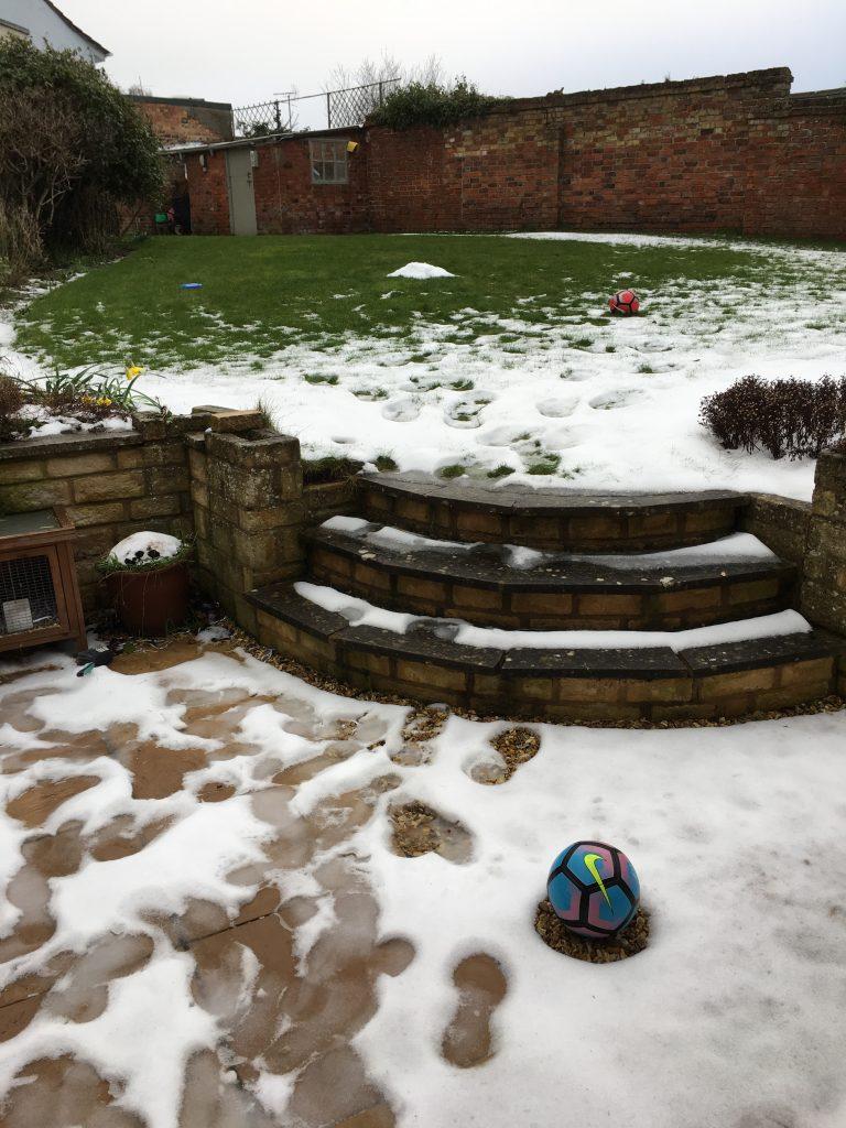snow, garden, melting, 365