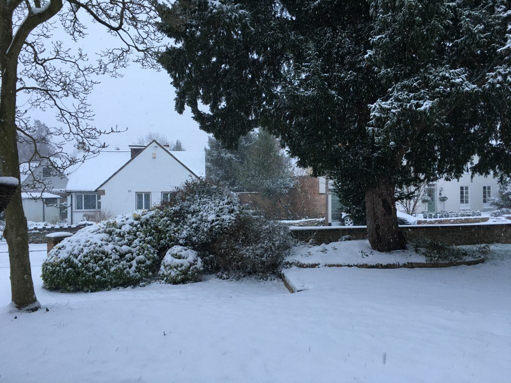 Snow, Snowy, Silent Sunday, My Sunday Photo