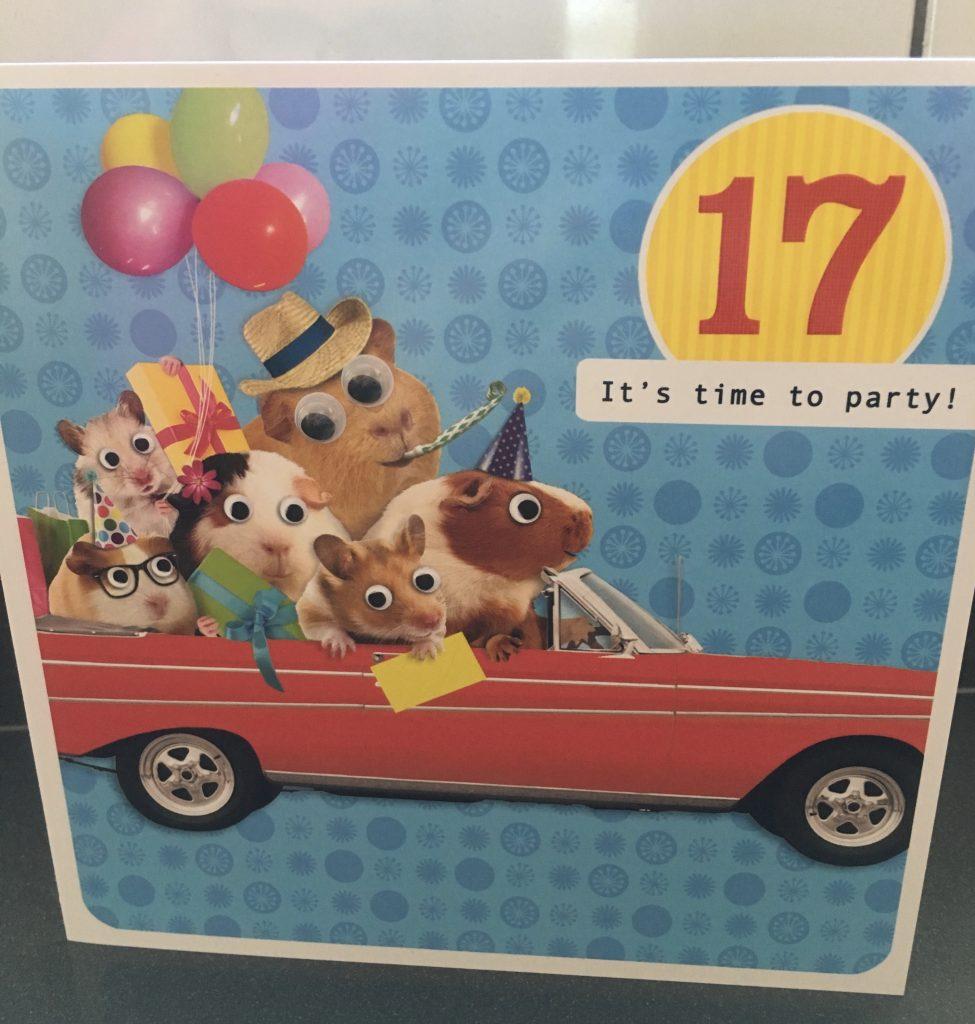 Birthday card, Birthday, 17th birthday, Son, 365
