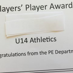 The players' player award