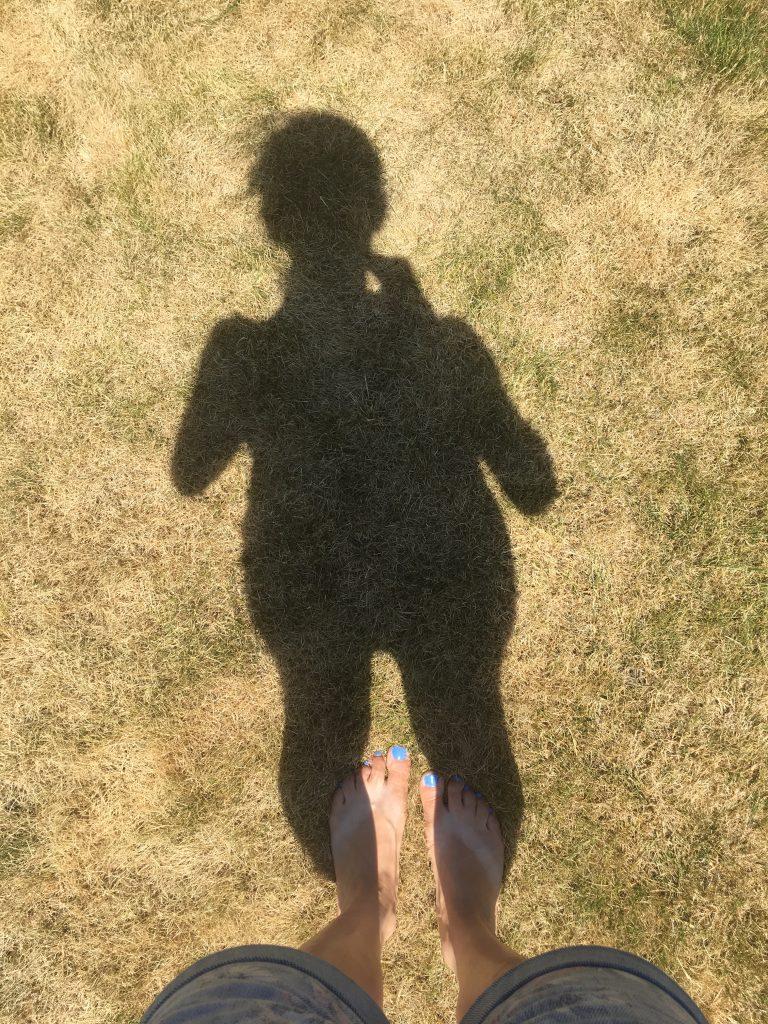 shadow, dry grass, heatwave, 365