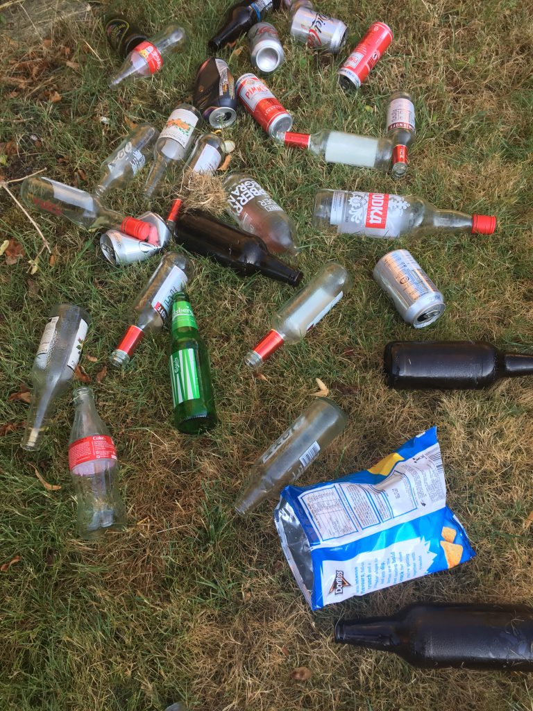 Alcohol, Bottles, Party, Teenage party, 365