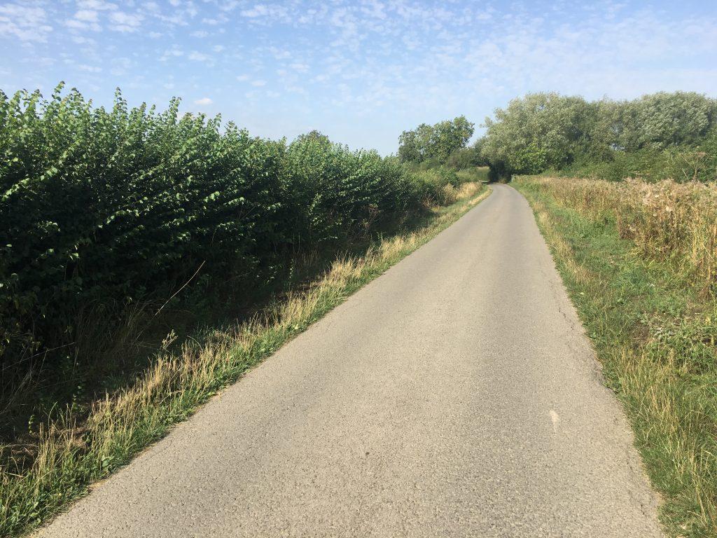 Countryside, Walk, 365