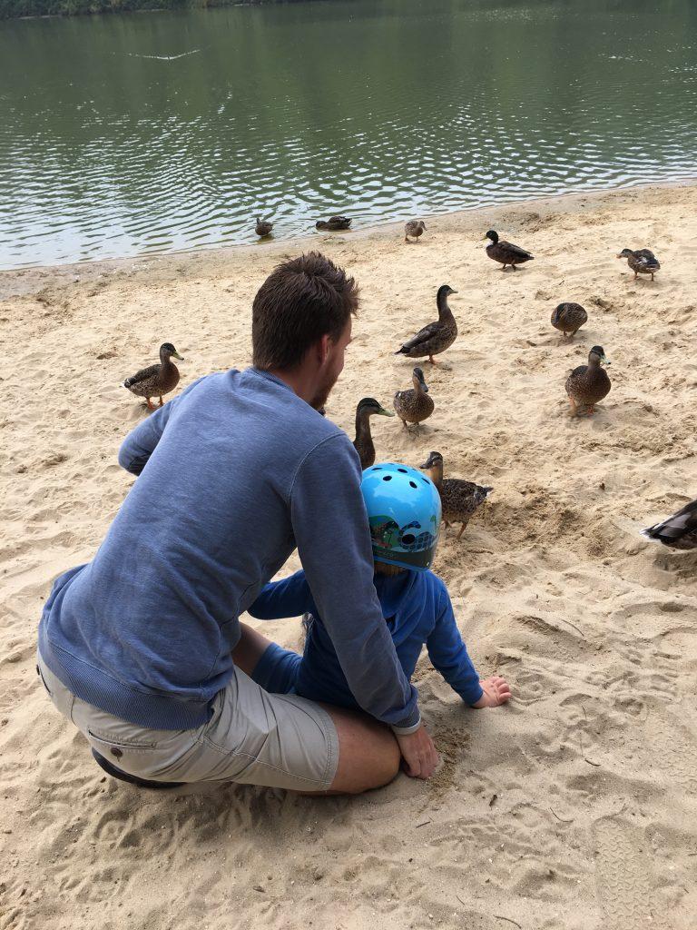 Ducks, Holiday, Feeding the ducks, Center Parcs, 365