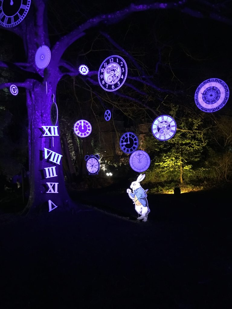 Sudeley Castle, Spectacle of Light, Alice in Wonderland, To me it's still Christmas