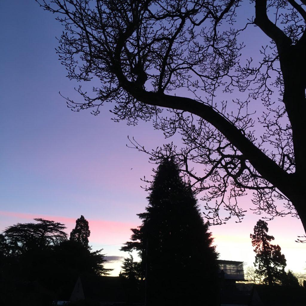 Sunrise, Sky, Morning, 365