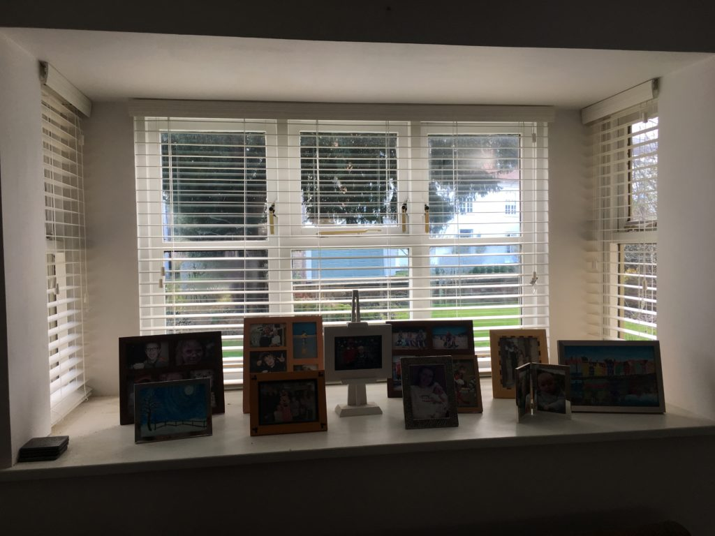 Window, Blinds, House, 365