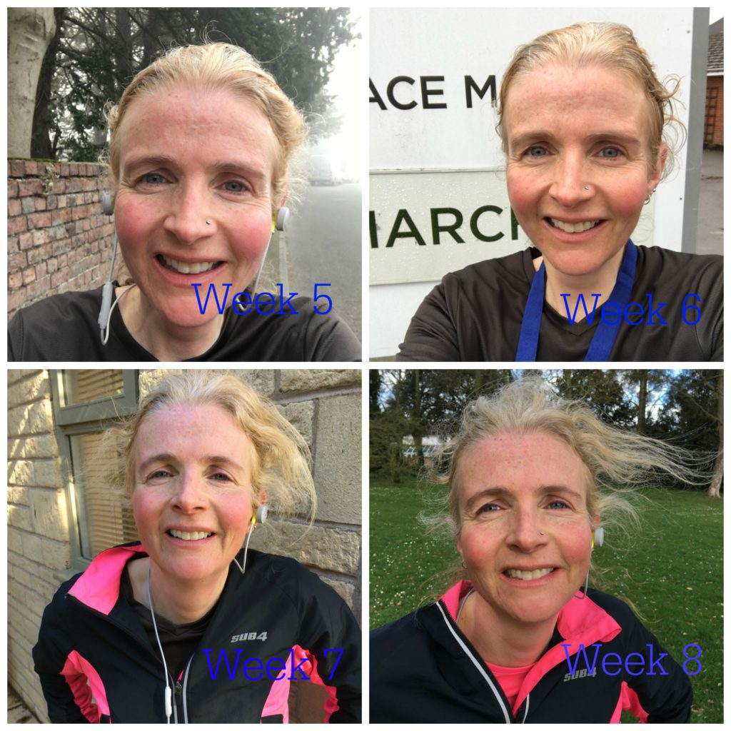 Marathon training, Running, Marathon training weeks 5 to 8