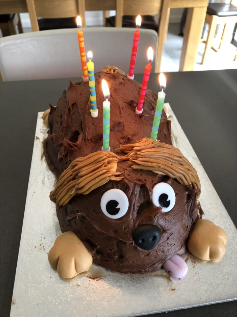 Birthday cake, Dog cake, Birthday, Cake, 365