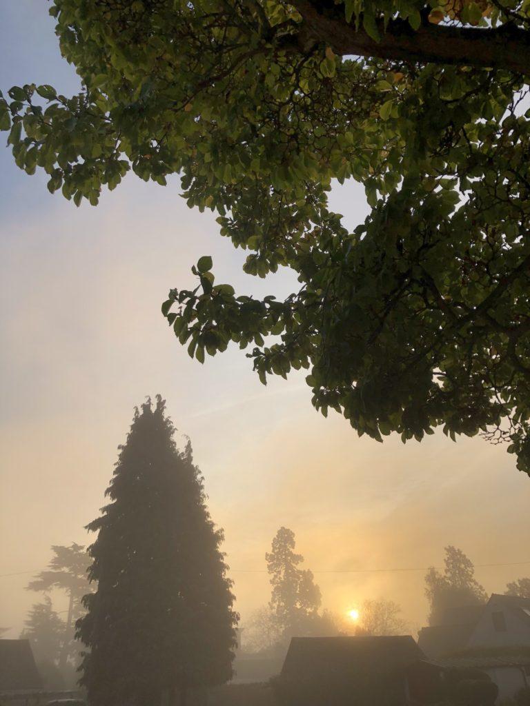sunrise, sky, mist, 365