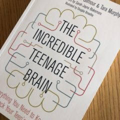 The Incredible Teenage Brain by Bettina Hohnen