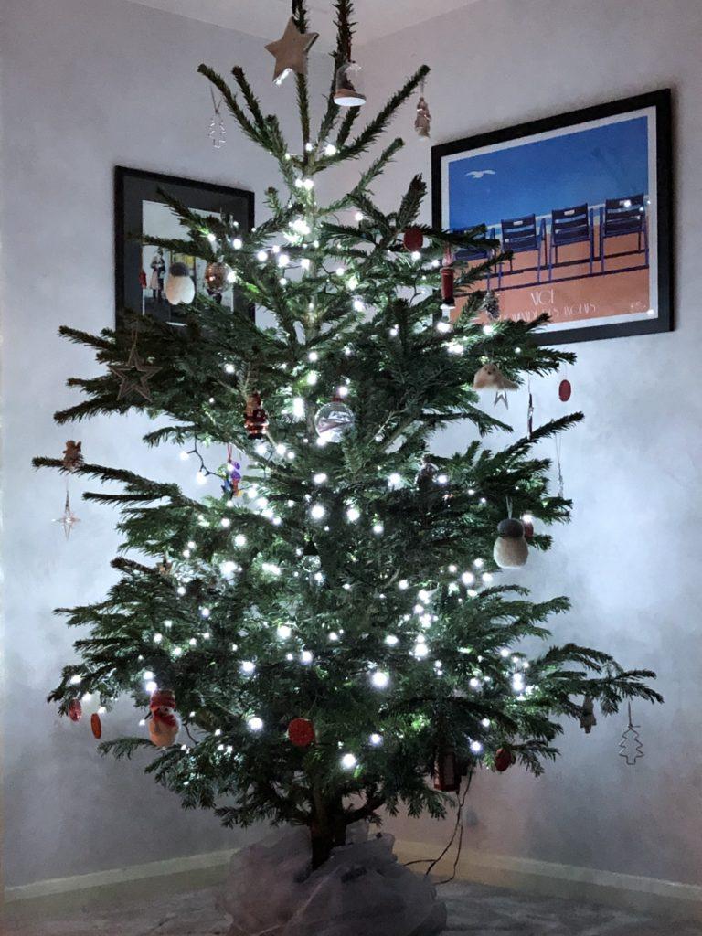 Christmas tree, Christmas, 365, Christmas decorations