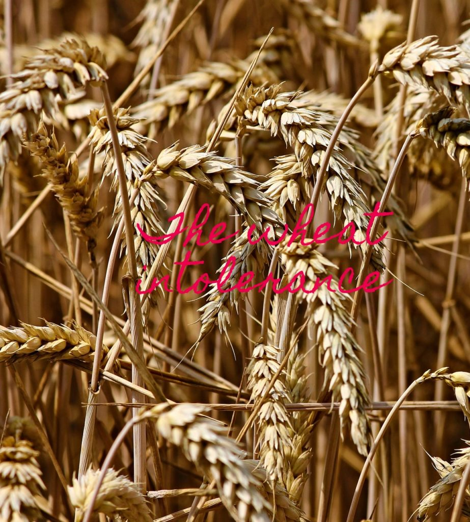 Wheat, Wheat intolerance, son, parenting
