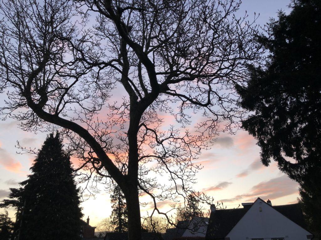 Sunrise, Sky, Silhouette, 366