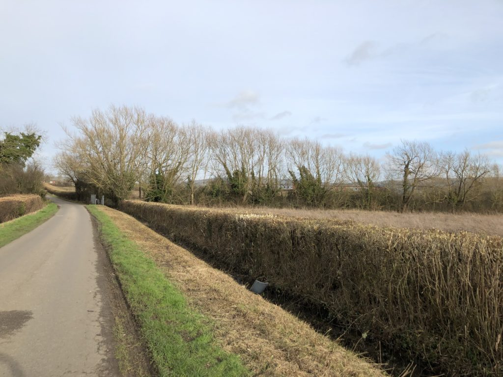Countryside, Winter, Sky, 365