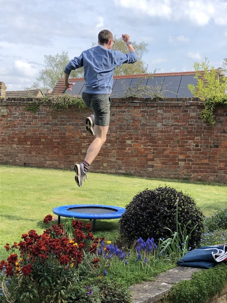 Son, Garden, Obstacle course, Jumping, Trampoline, 366