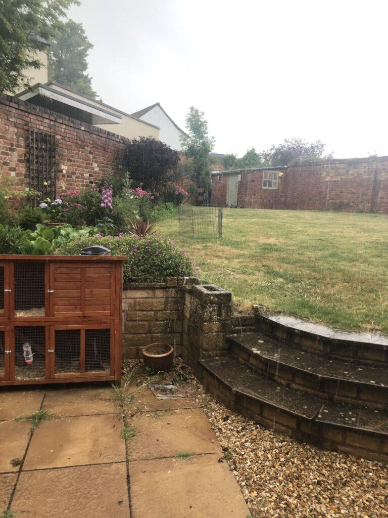 Rain, Storm, Garden, 366
