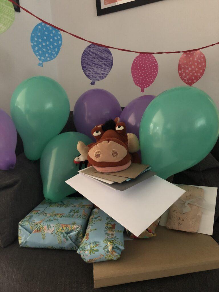 Birthday, 19th birthday, Son, Pumba, Presents, Cards, Balloons, 366