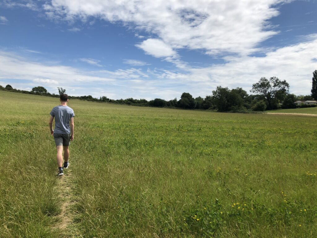 Son, Walking, Countryside, 366