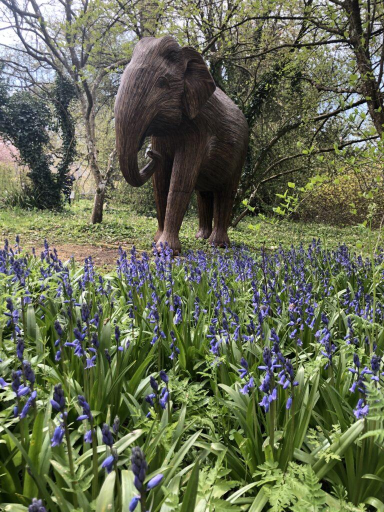Wooden elephant, Bluebells, Sudeley Castle, Silent Sunday, My Sunday Photo