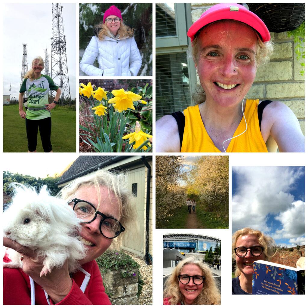Running, Garden, Guinea pig, Outside, 1000 hours outside